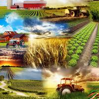 Оборудование для фермеров